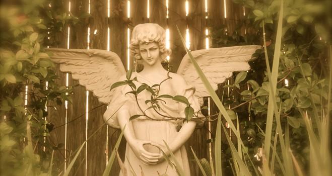 Angels-101