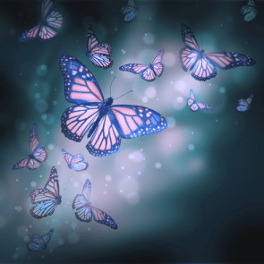 Butterflies & Spiritual Coaching by Heather Hildebrand